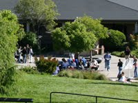 Picture of one of the Cabrillo lawns.